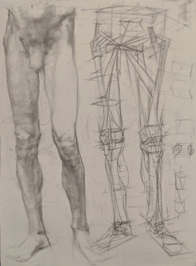 Drawing and anatomy