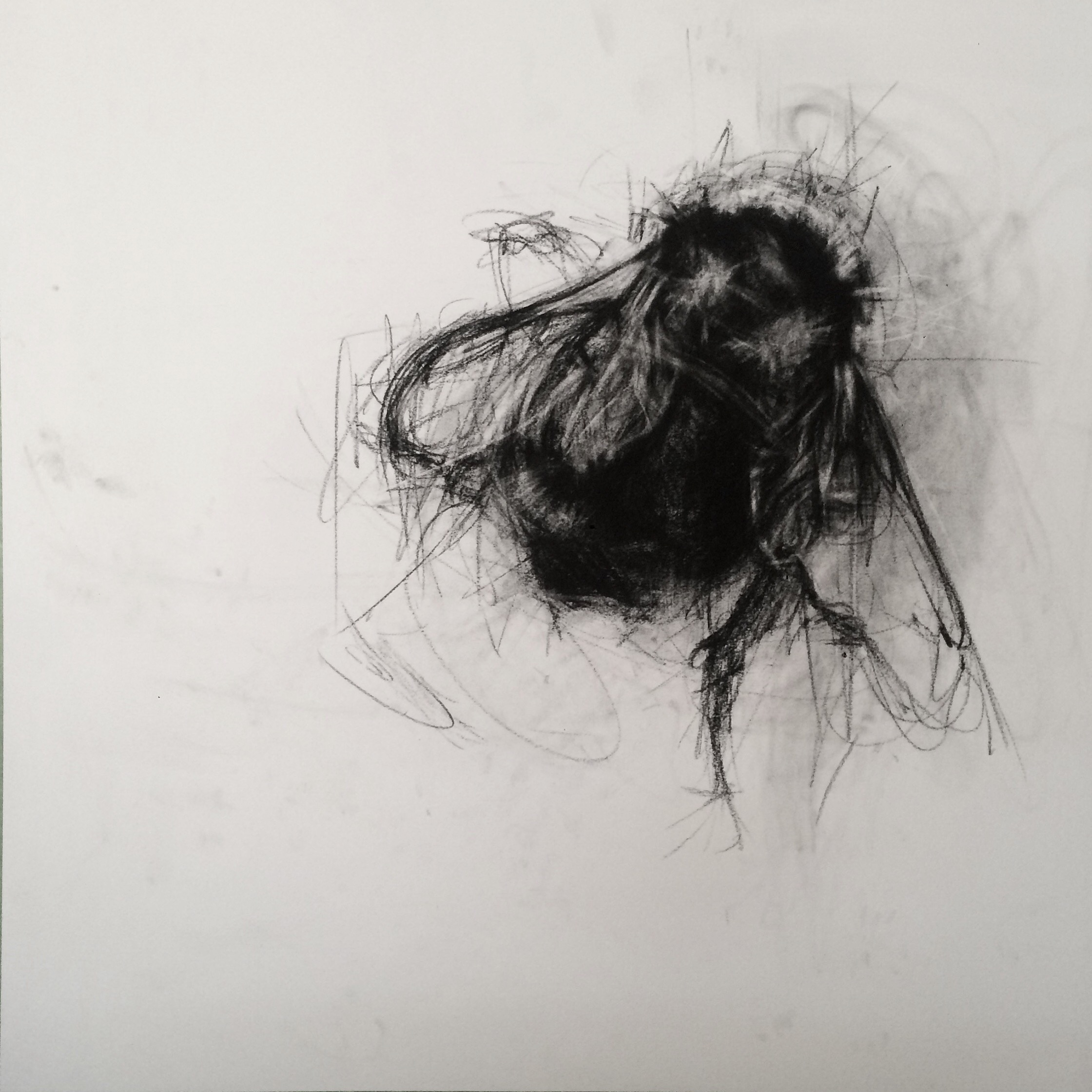 contemporary drawings - April Coppini C